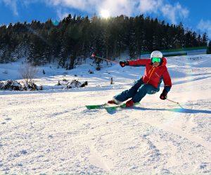 Michaela Dorfmeister Ski